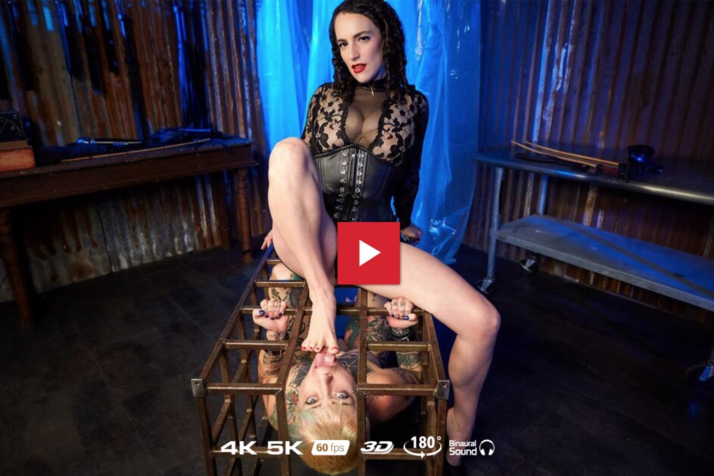 The Lezdom Cage Dominion - Dana Spit VR Porn - Dana Spit Virtual Reality Porn